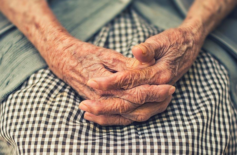 Miminho aos Avós reúne franchisados em convenção anual
